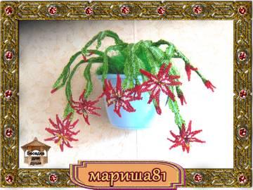 http://sd.uploads.ru/t/BZAPT.jpg