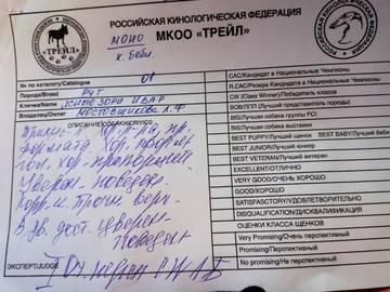 http://sd.uploads.ru/t/EWZ8I.jpg