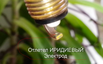 http://sd.uploads.ru/t/HnKqG.png