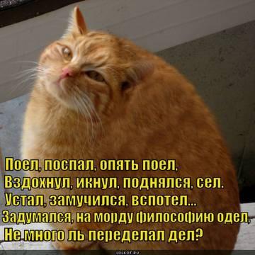 http://sd.uploads.ru/t/L1Rnh.jpg