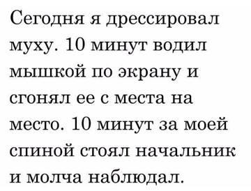 http://sd.uploads.ru/t/LFbEl.jpg