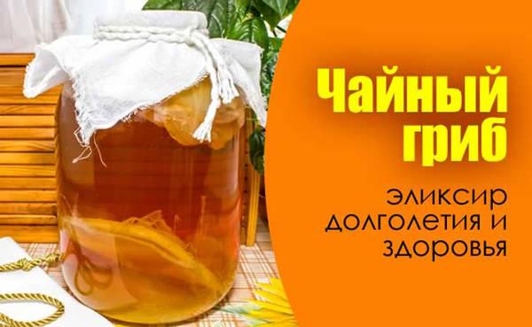 http://sd.uploads.ru/t/LneuP.jpg