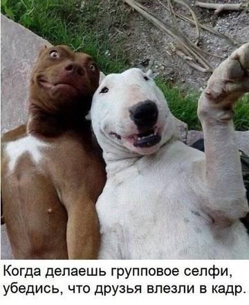 http://sd.uploads.ru/t/MtY43.jpg