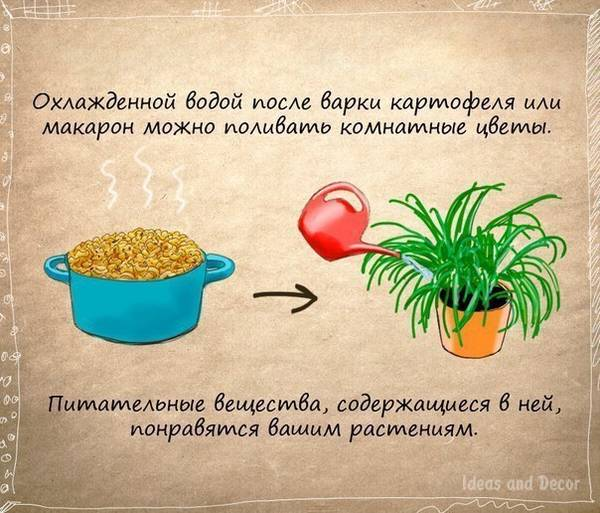 http://sd.uploads.ru/t/N0wJk.jpg