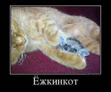 http://sd.uploads.ru/t/OK0Qf.jpg