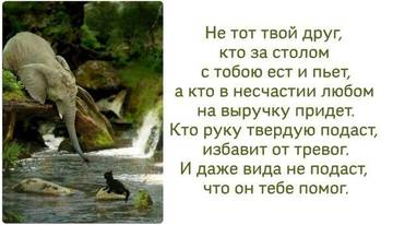 http://sd.uploads.ru/t/Pjozd.jpg