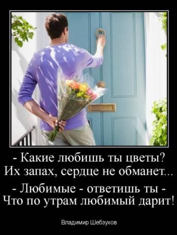 http://sd.uploads.ru/t/Pwi8u.jpg
