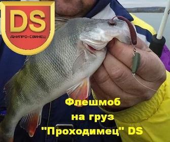 http://sd.uploads.ru/t/QBnqM.jpg