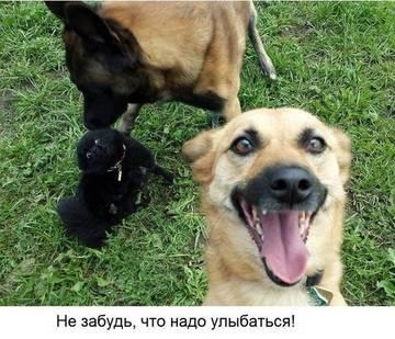 http://sd.uploads.ru/t/QXx8K.jpg