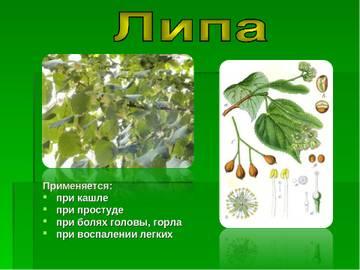 http://sd.uploads.ru/t/RS5f1.jpg