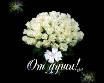 http://sd.uploads.ru/t/Td63a.jpg