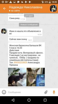 http://sd.uploads.ru/t/U9c4I.jpg