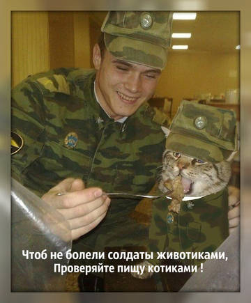 http://sd.uploads.ru/t/UGy89.jpg