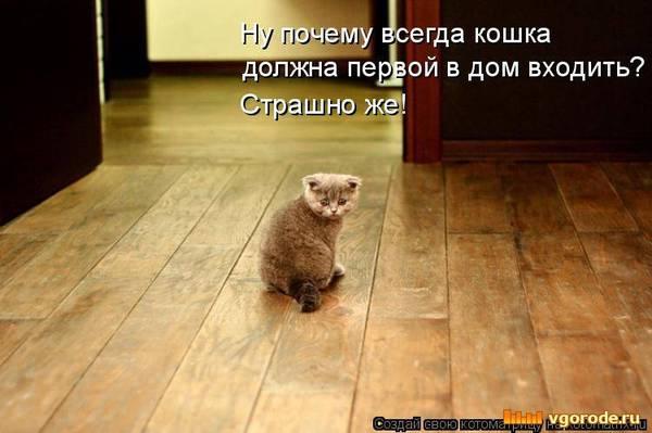 http://sd.uploads.ru/t/UikvH.jpg