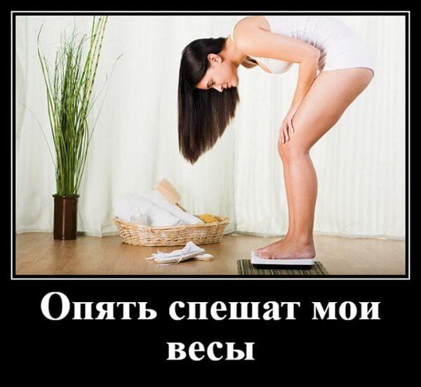 http://sd.uploads.ru/t/Xb2u0.jpg