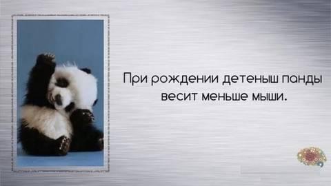 http://sd.uploads.ru/t/afEuT.jpg