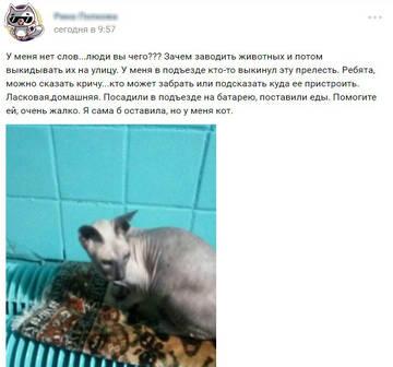 http://sd.uploads.ru/t/ahrl2.jpg