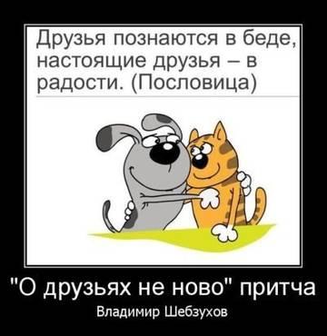 http://sd.uploads.ru/t/cbFEG.jpg