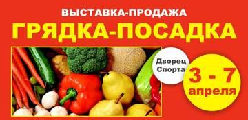 http://sd.uploads.ru/t/fVMhX.jpg
