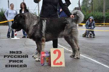 http://sd.uploads.ru/t/g8NCJ.jpg