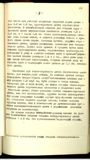 http://sd.uploads.ru/t/gN3Ef.jpg