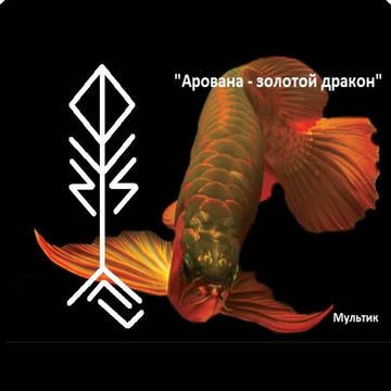 http://sd.uploads.ru/t/hu0Aj.jpg