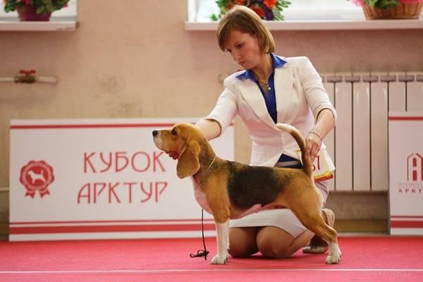 http://sd.uploads.ru/t/kjegN.jpg