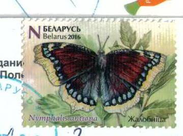 http://sd.uploads.ru/t/pwvsS.jpg
