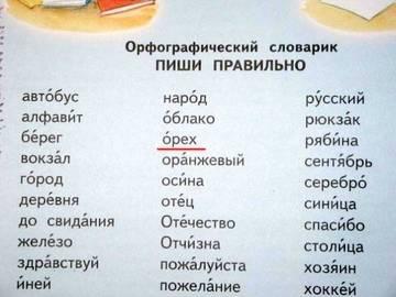 http://sd.uploads.ru/t/vLQPw.jpg