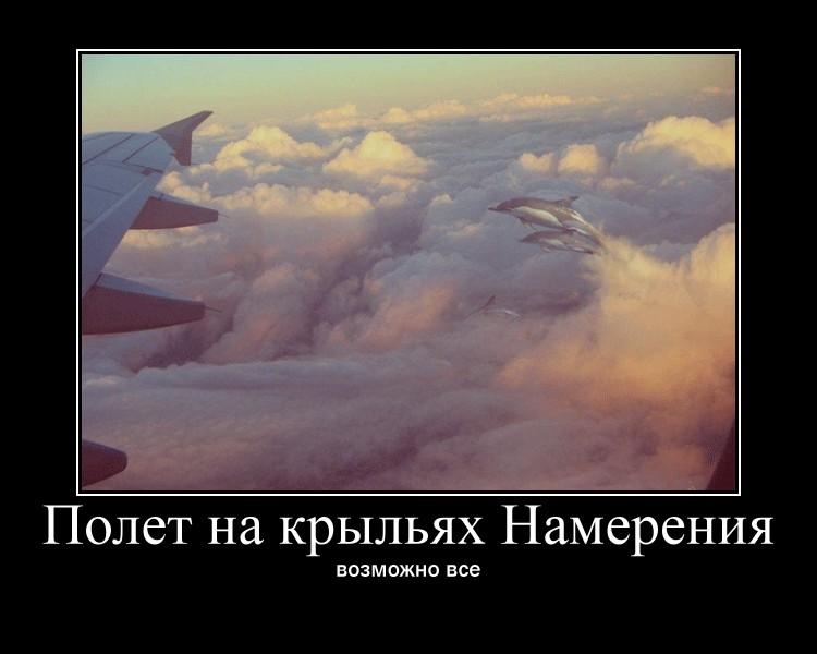 http://sd.uploads.ru/w9ODo.jpg