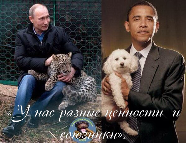 http://sd.uploads.ru/zVdvc.jpg